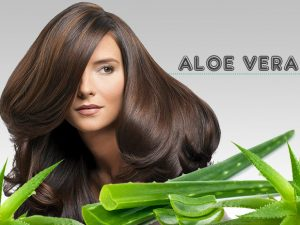 Why you need aloe vera in your hair care regime